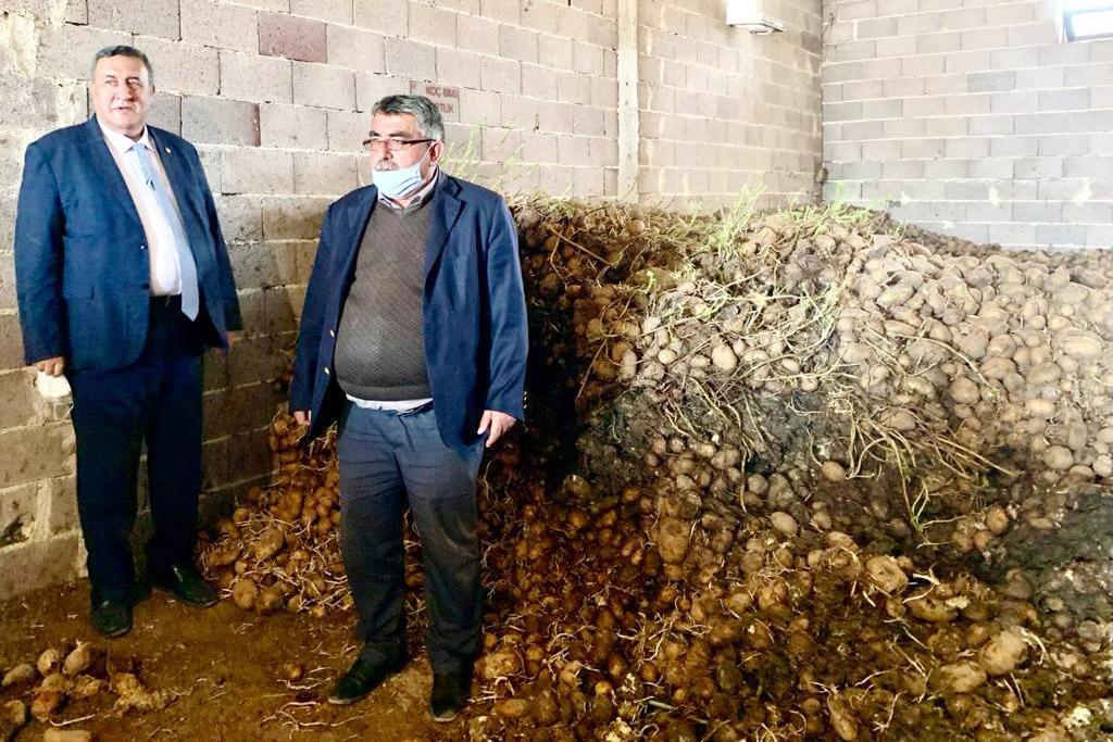 Gürer: En az 100 bin ton patates çürüdü